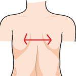 肩甲骨の図